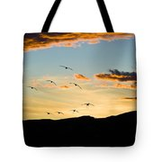 Sandhill Cranes In New Mexico Tote Bag