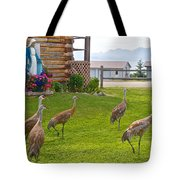 Sandhill Cranes On The Lawn By The Statue Of Mary In Homer-alaska Tote Bag