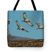 Sandhill Cranes Over Chupadera Mountains Tote Bag