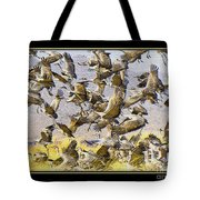 Sandhill Cranes Startled Tote Bag