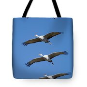 Sandhill In Fromation Tote Bag