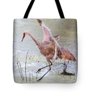 Sandhill Leap Of Faith Tote Bag