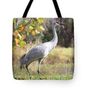 Sandhill Passing By Tote Bag