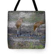 Sandhill Stork Tote Bag