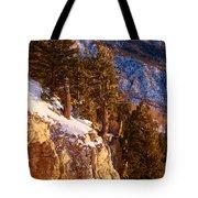 Sandia Peak Summit Albuquerque New Mexico Tote Bag