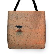 Sandpiper On Shoreline Tote Bag