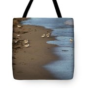 Sandpipers 2 Tote Bag