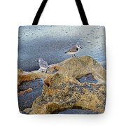 Sandpipers On Coral Beach Tote Bag