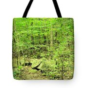 Sandstone Glade Of Shades Mountain Tote Bag