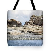 Sandstone Island Sculptures Tote Bag