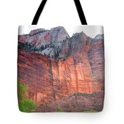 Sandstone Wall In Zion Tote Bag by Robert Bales