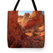 Sandstone Window Tote Bag