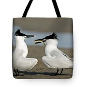 Sandwich Tern Offering Fish Tote Bag