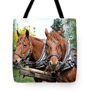 Sandy And Judy Tote Bag