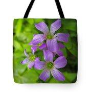 Sandy Creek Wildflowers Tote Bag