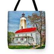 Sandy Hook Spring Tote Bag