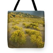Sangre De Cristo Mountains At Great Tote Bag