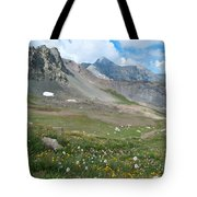 Sangre De Cristos Meadow And Mountains Tote Bag
