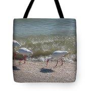 Sanibel Ibis Tote Bag