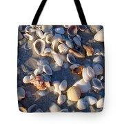 Sanibel Island Shells 1 Tote Bag