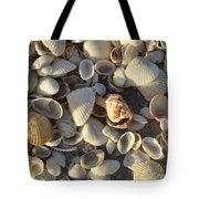 Sanibel Island Shells 3 Tote Bag