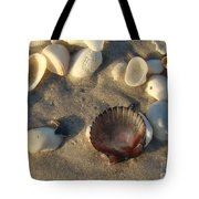 Sanibel Island Shells 5 Tote Bag