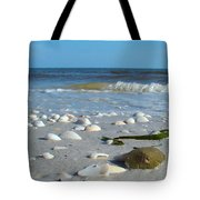 Sanibel Sand Dollar 2 Tote Bag