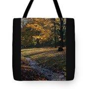 Sanilac Park Tote Bag