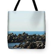 Santa Cruz Lighthouse Wide Tote Bag