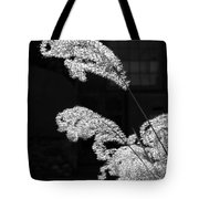 Santa Fe Feather Duster Tote Bag