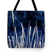 Santa Fe Grass 1 Tote Bag