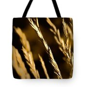 Santa Fe Grass 2 Tote Bag