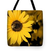 Santa Fe Sunflower 1 Tote Bag