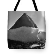 Santa Hat And Shells 2 12/17 Tote Bag