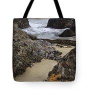 Santa Monica Inlet Tote Bag