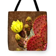 Santa Rita Cactus Tote Bag