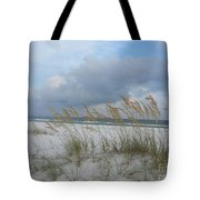 Santa Rosa Island National Seashore Tote Bag