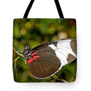 Sapho Butterfly Tote Bag