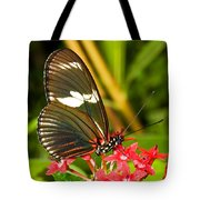 Sapho Longwing Butterfly Tote Bag