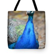 Sapphire Smiling Tote Bag