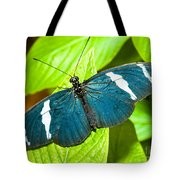 Sara Butterfly Tote Bag