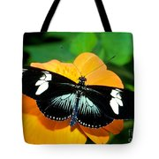 Sara Longwing Butterfly Tote Bag