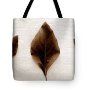Sassafras Leaves In Sepia Tote Bag