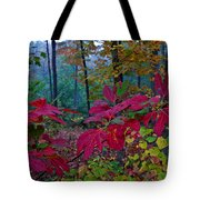 Sassafras Tea Anyone Tote Bag