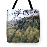 Savage Gulf Tennessee State Park Tote Bag