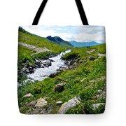 Savage River From Savage River Trail In Denali Np-ak    Tote Bag
