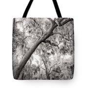 Savannah Drive Tote Bag