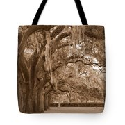 Savannah Sepia - Emmet Park Tote Bag