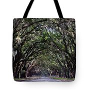 Savannah Wormsloe  Tote Bag