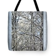 Save The Date - Winter Wedding Tote Bag
